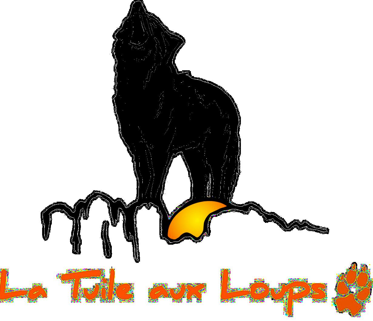 Logo sp trans