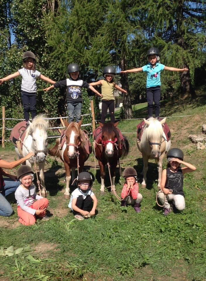 voltige poney